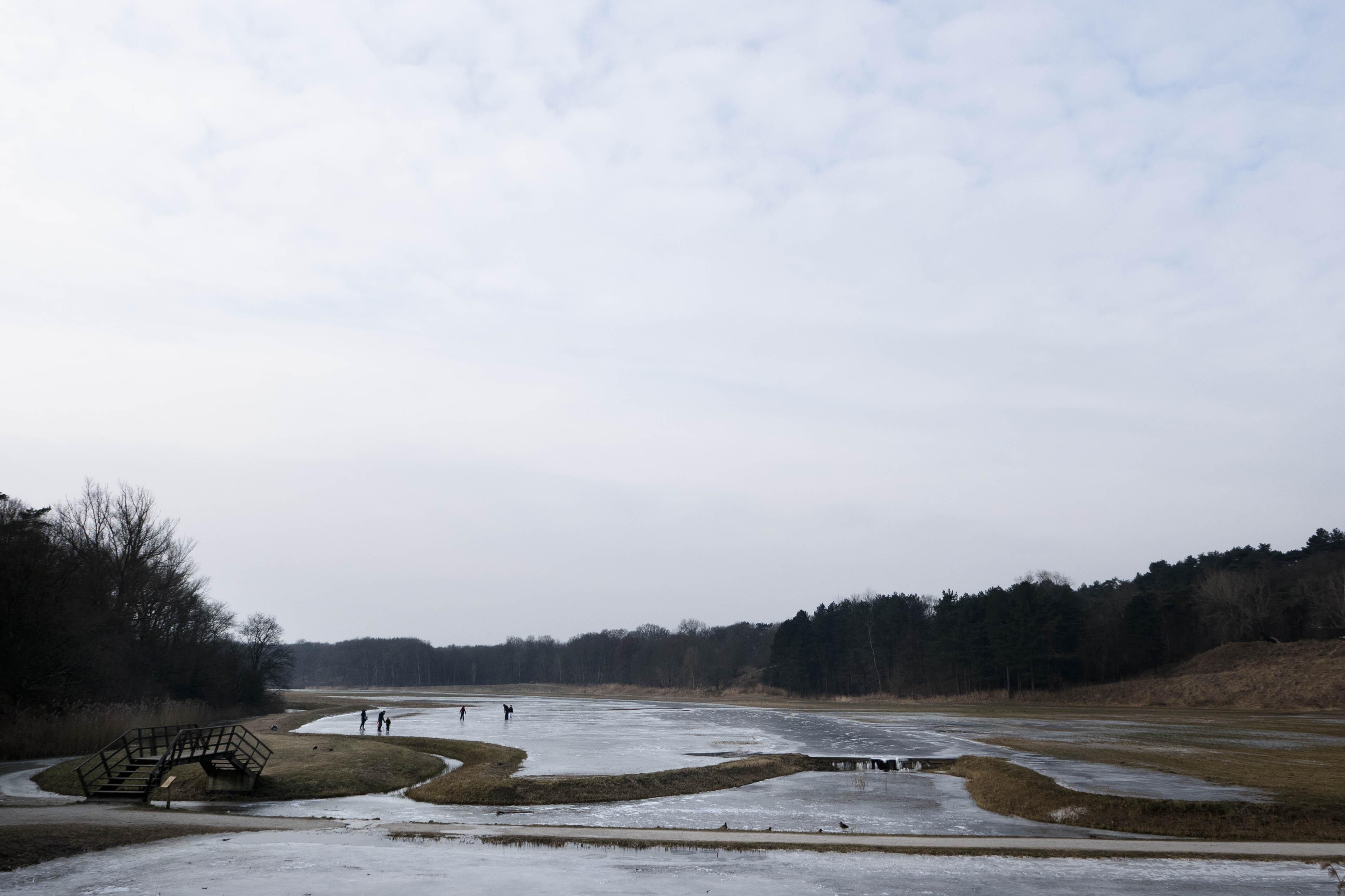 Nationaal Park Zuid-Kennemerland landschapsfotografie